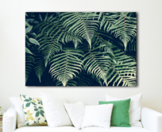 mounted print of leaves on wall above couch